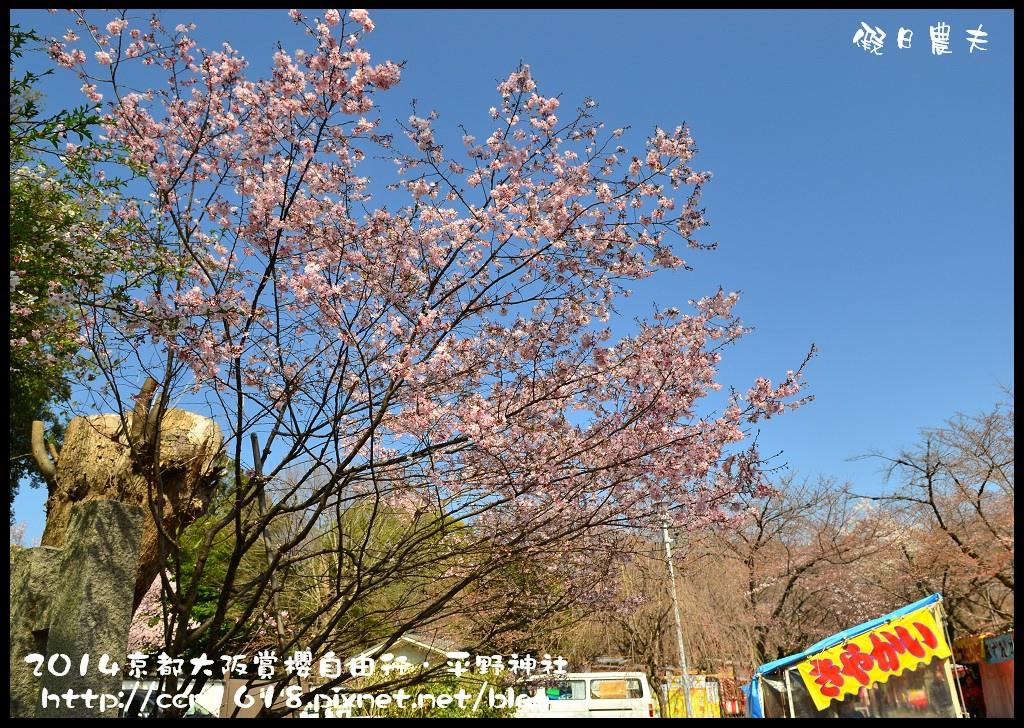 平野神社DSC_9550