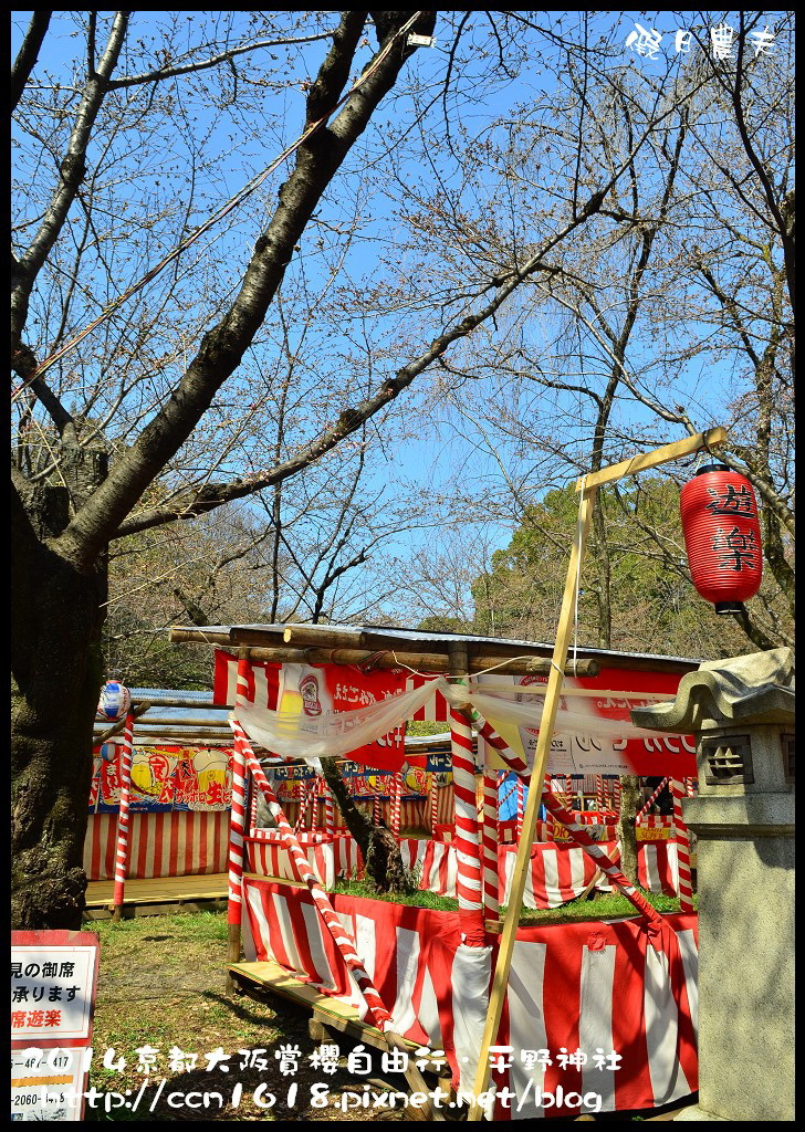 平野神社DSC_9557