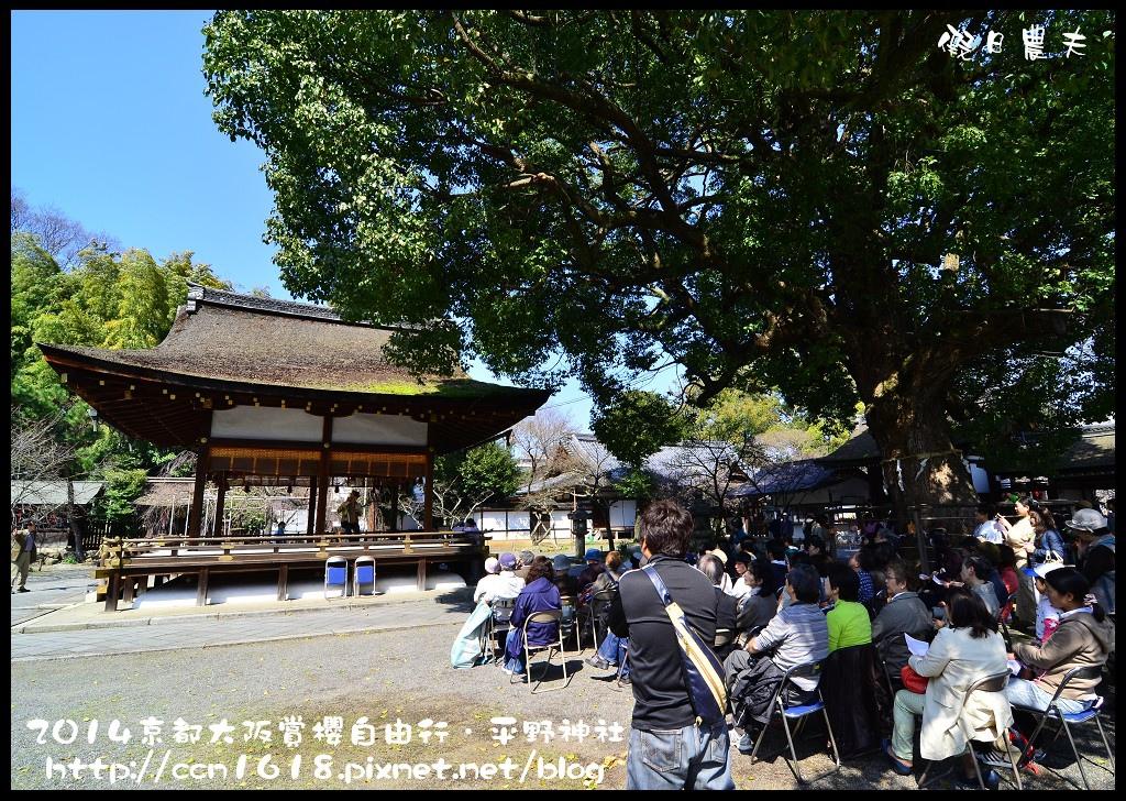 平野神社DSC_9597