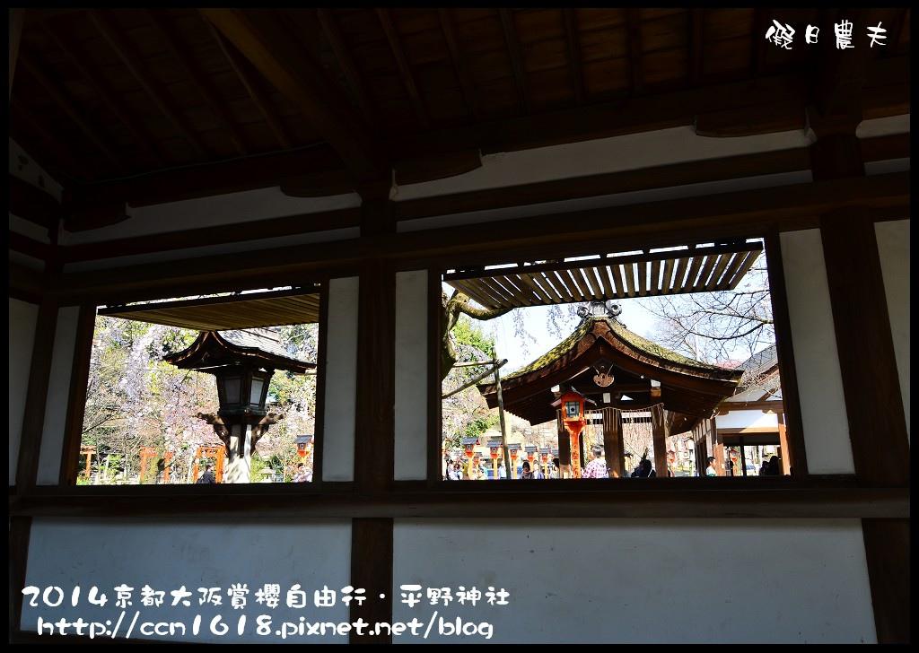 平野神社DSC_9599