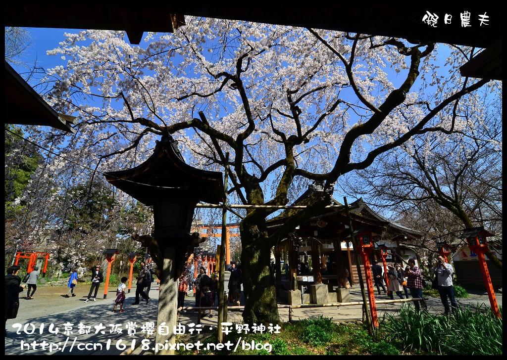 平野神社DSC_9601