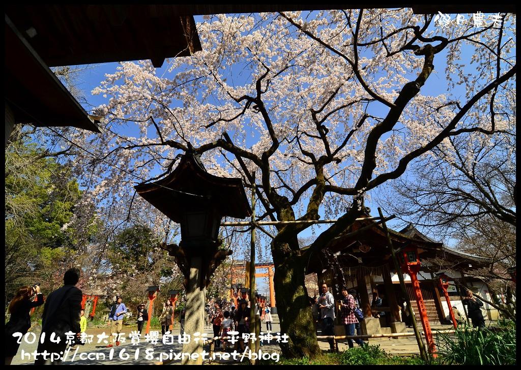 平野神社DSC_9603