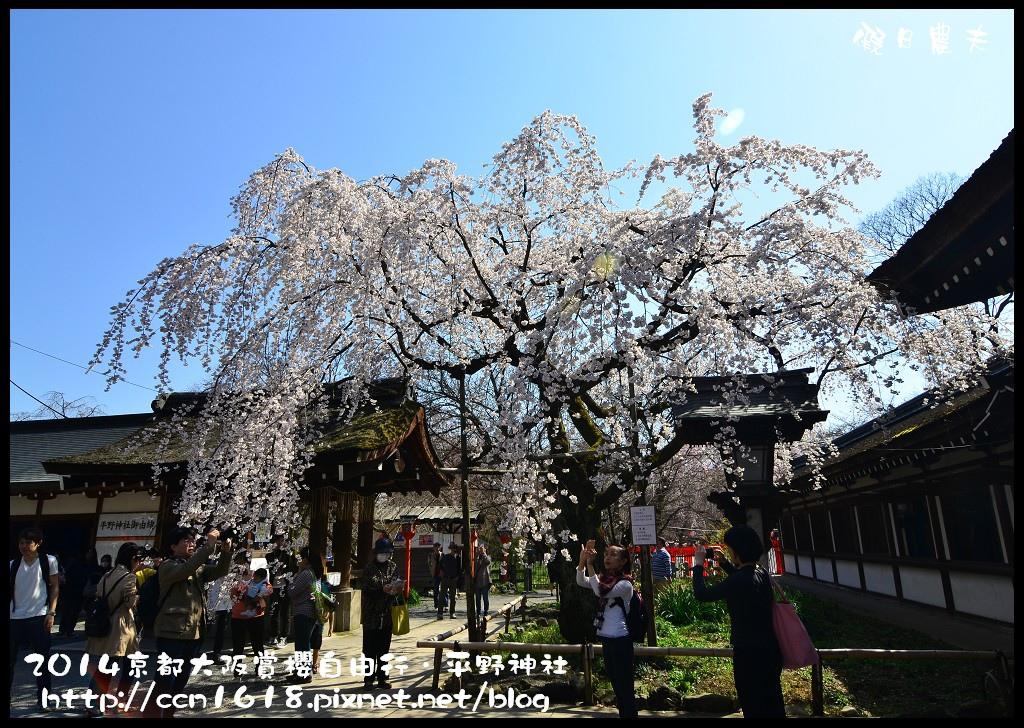 平野神社DSC_9605
