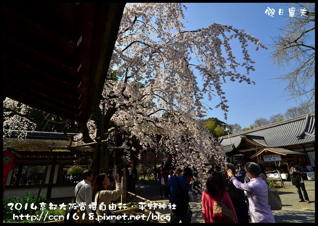 平野神社DSC_9607