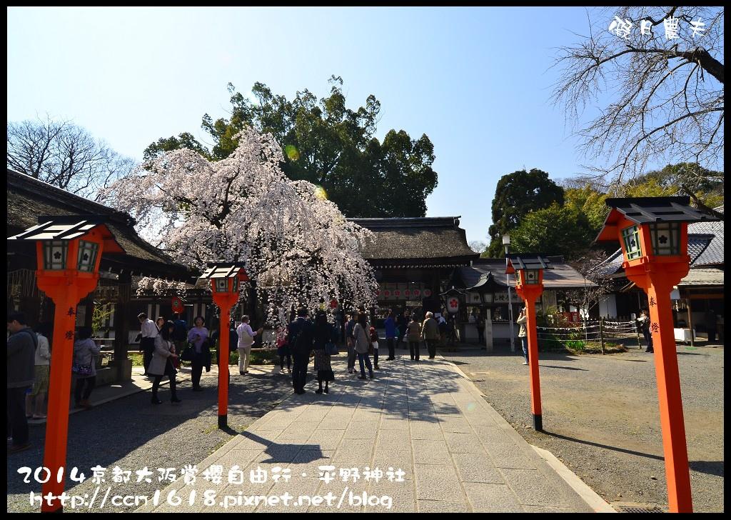 平野神社DSC_9609