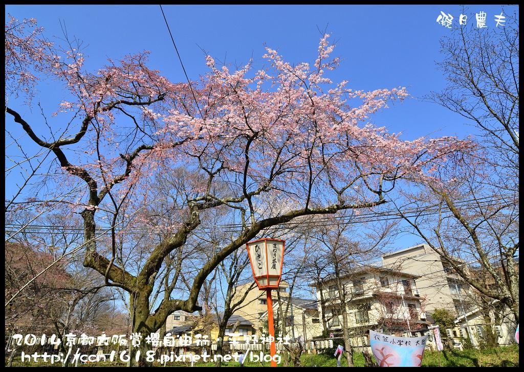 平野神社DSC_9652