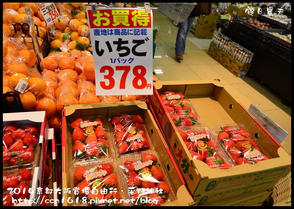 平野神社DSC_9662