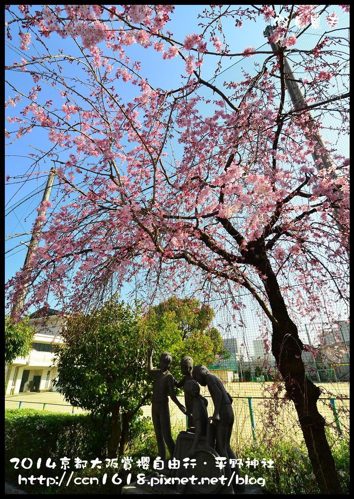 平野神社DSC_9667