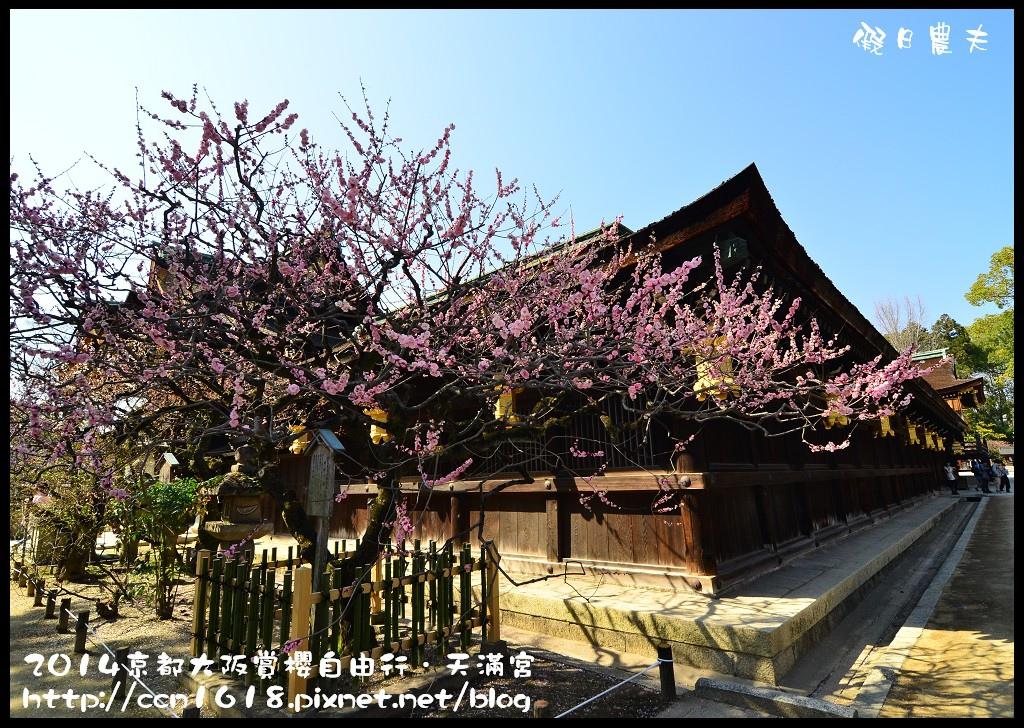 天滿宮DSC_9627