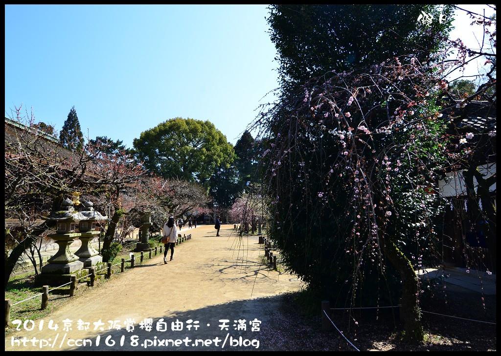 天滿宮DSC_9634
