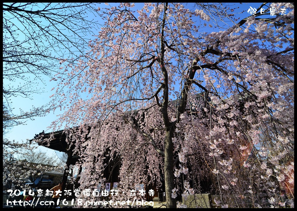 立本寺DSC_9676