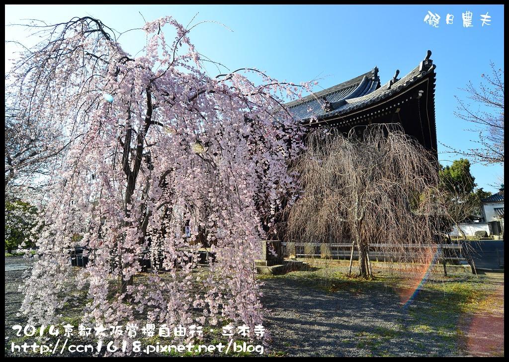立本寺DSC_9679
