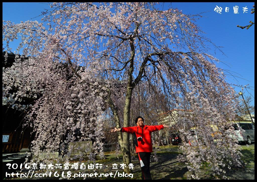立本寺DSC_9696