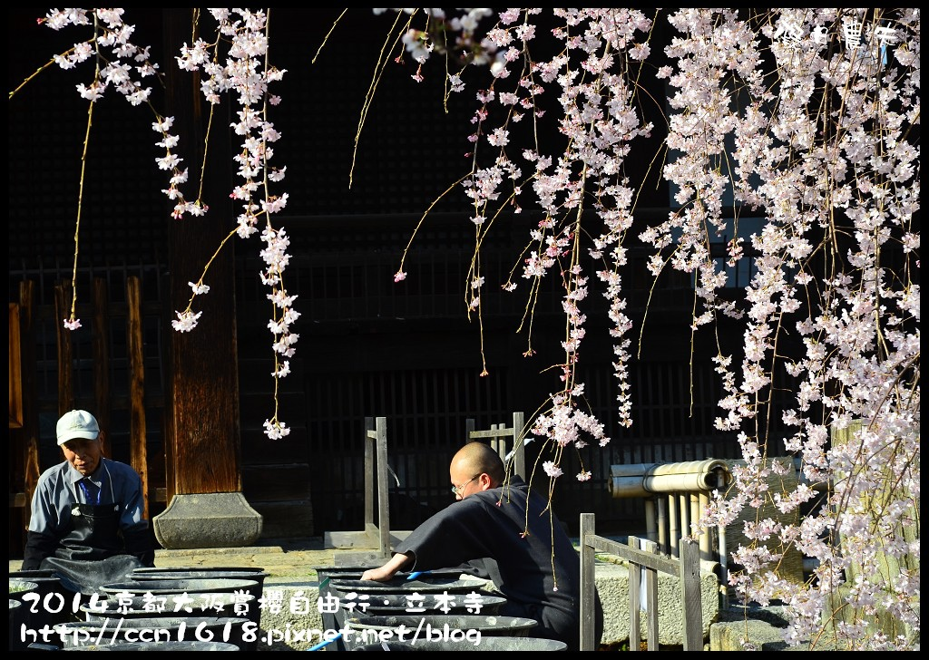 立本寺DSC_9708