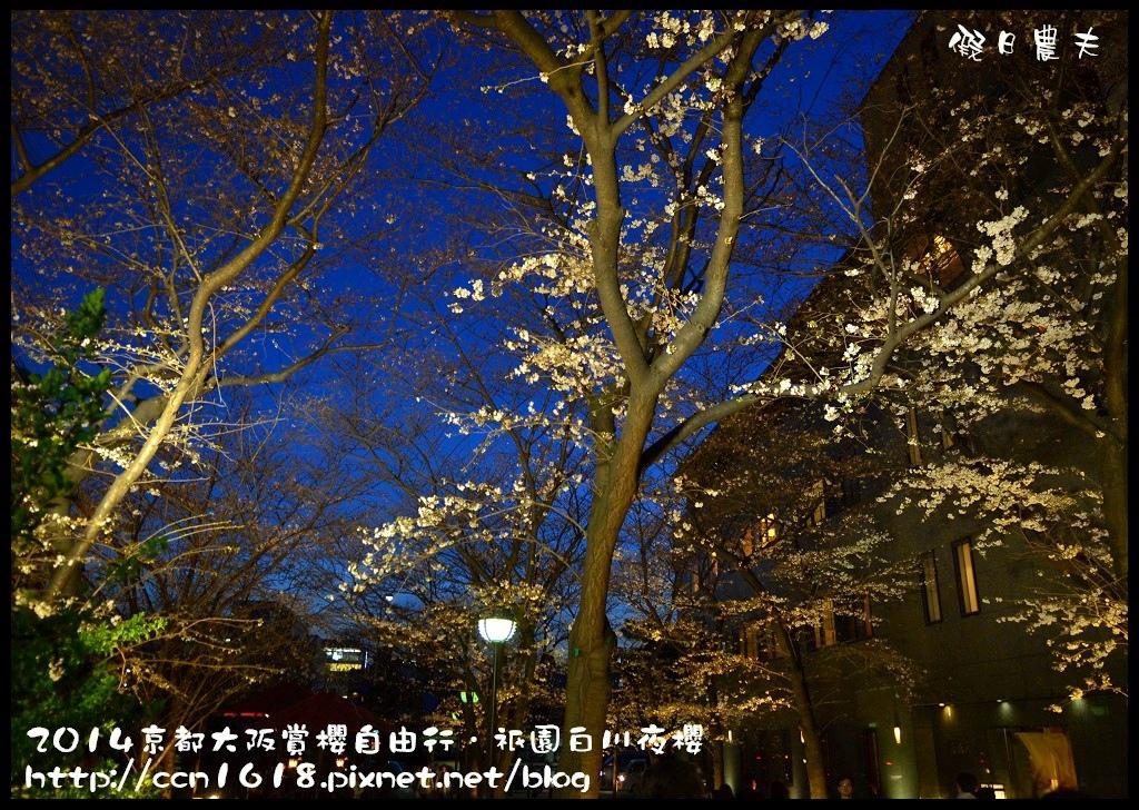 祇園白川夜櫻DSC_9818