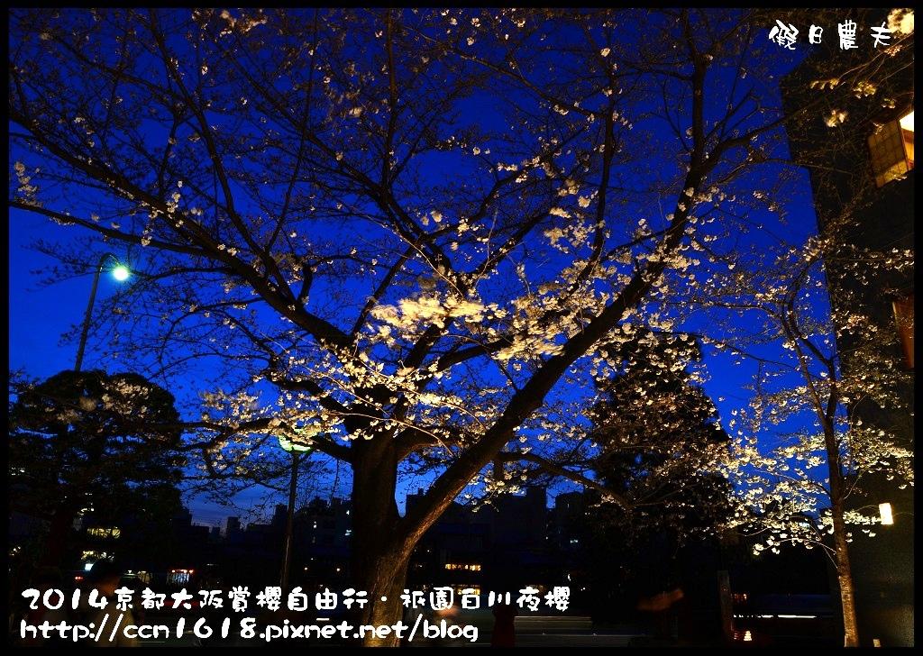祇園白川夜櫻DSC_9824