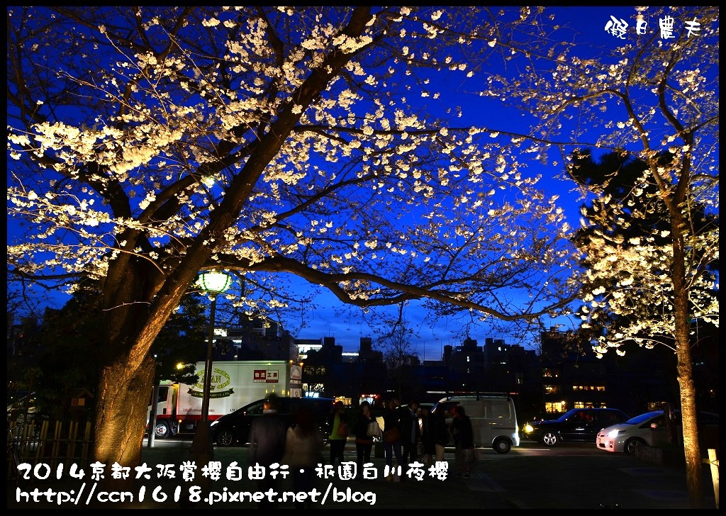 祇園白川夜櫻DSC_9828