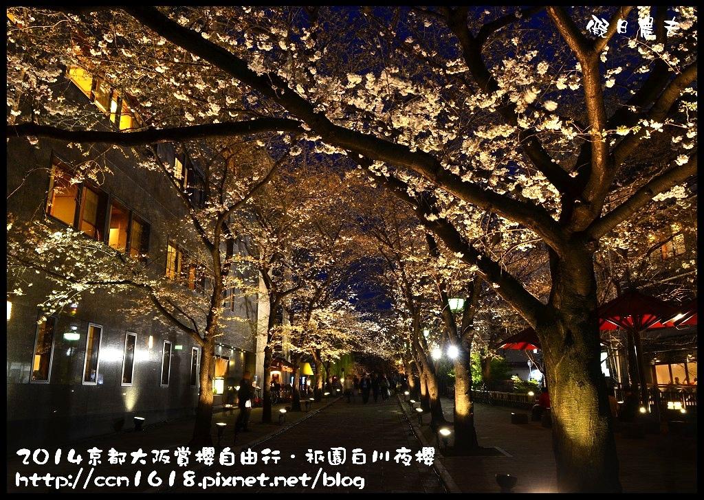 祇園白川夜櫻DSC_9826