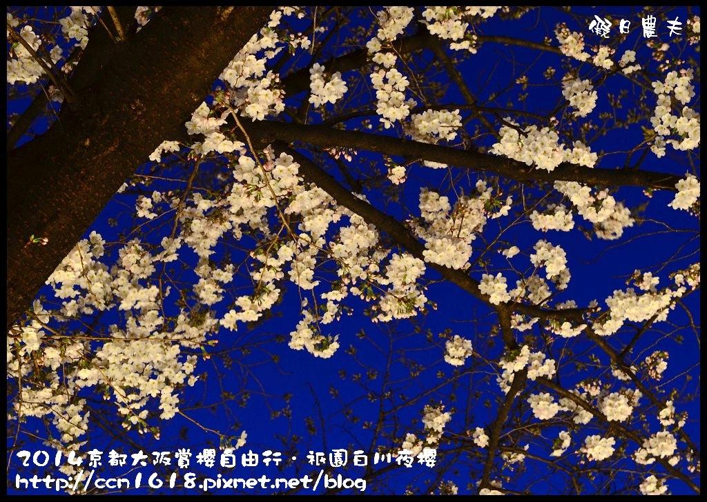 祇園白川夜櫻DSC_9830