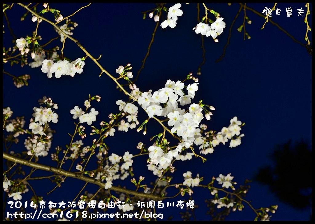 祇園白川夜櫻DSC_9831