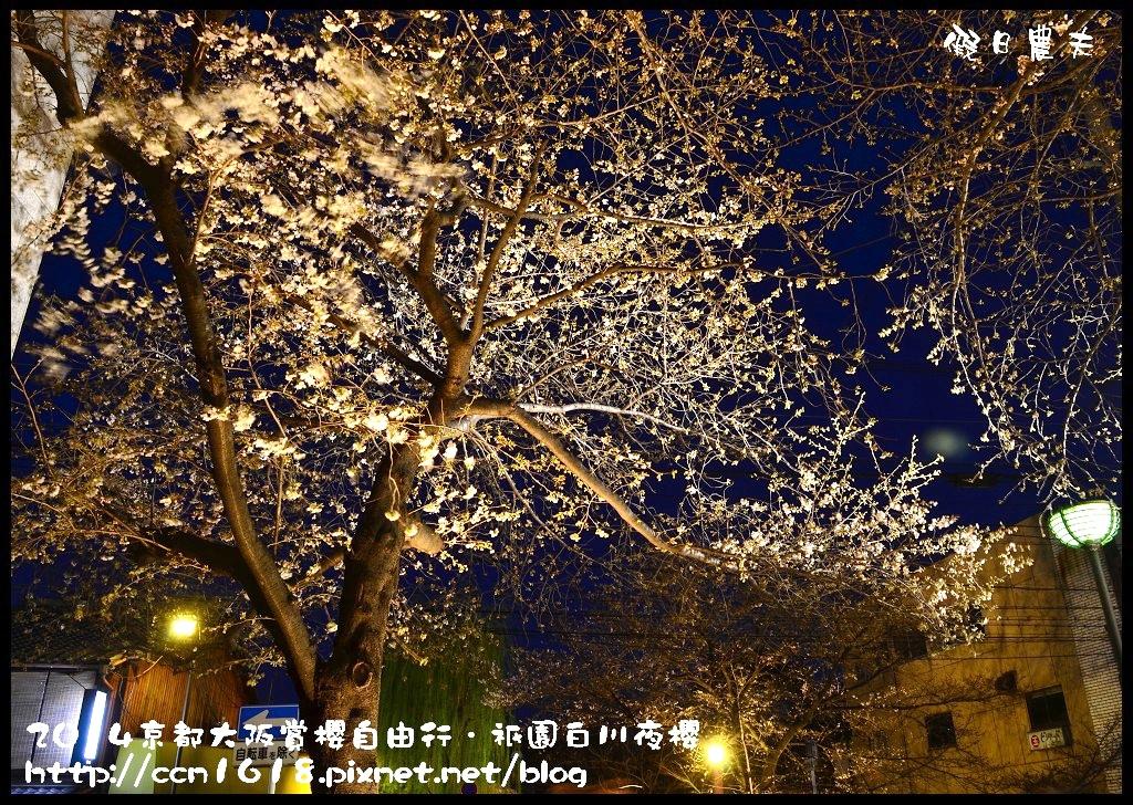 祇園白川夜櫻DSC_9834