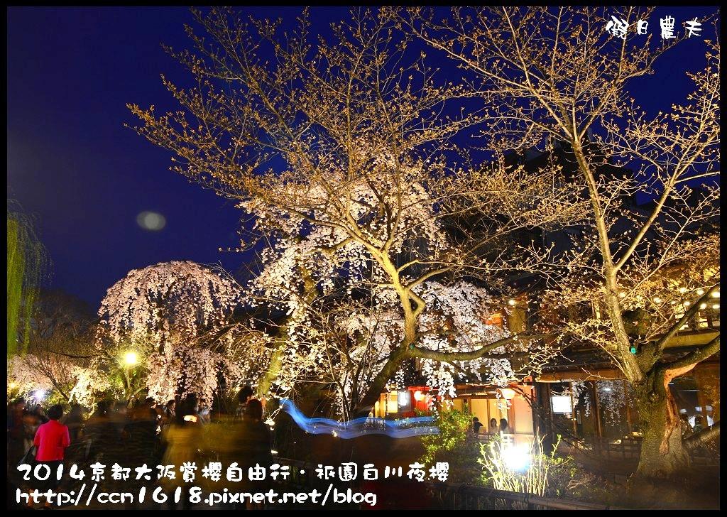 祇園白川夜櫻DSC_9835