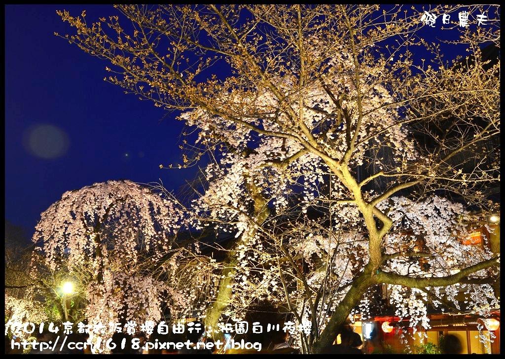 祇園白川夜櫻DSC_9838