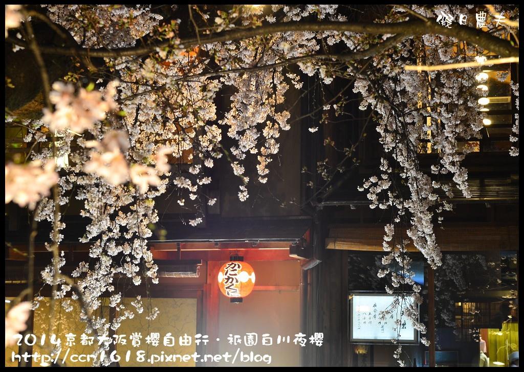 祇園白川夜櫻DSC_9839