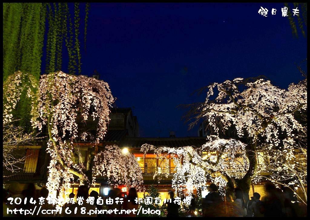 祇園白川夜櫻DSC_9851