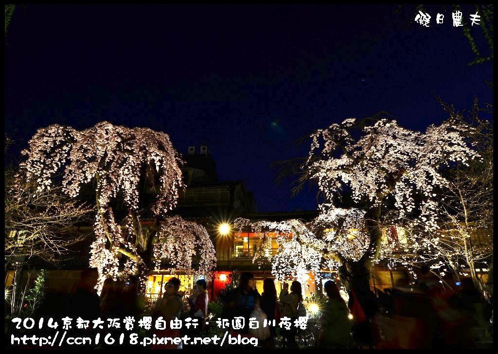 祇園白川夜櫻DSC_9854