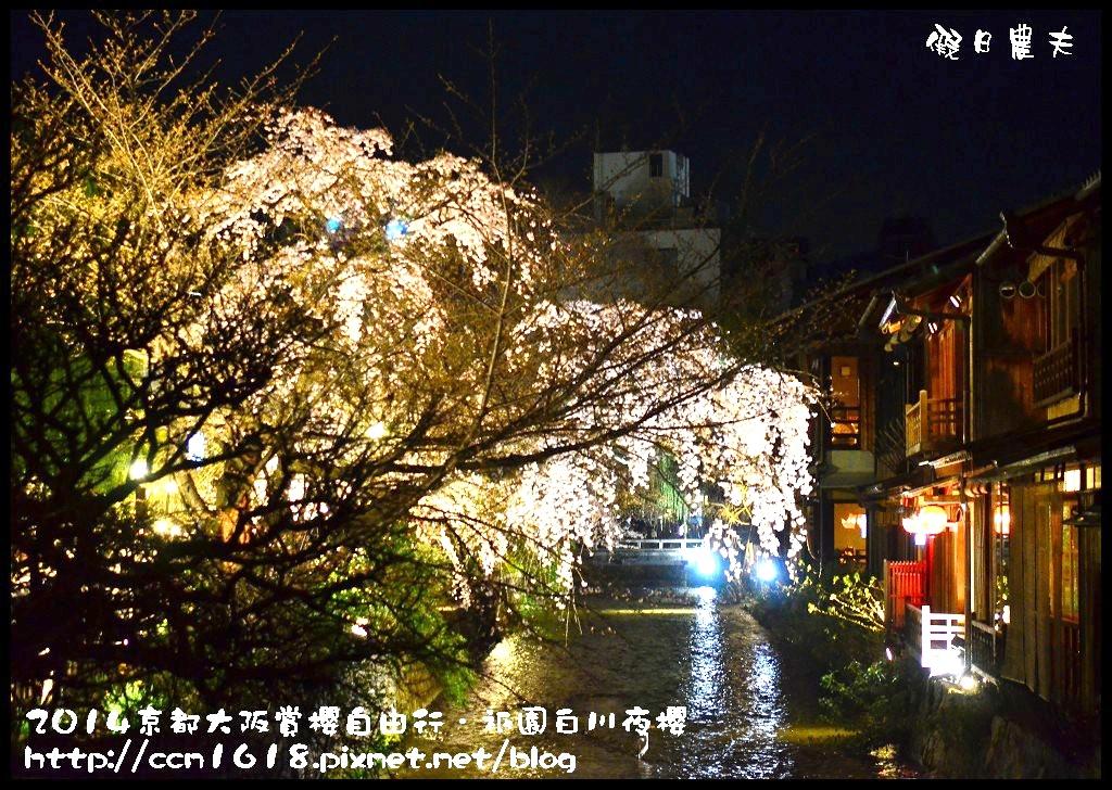 祇園白川夜櫻DSC_9893