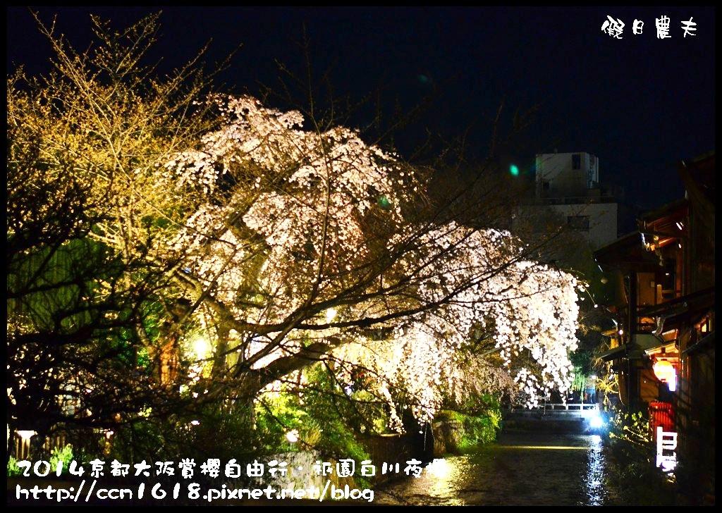 祇園白川夜櫻DSC_9896
