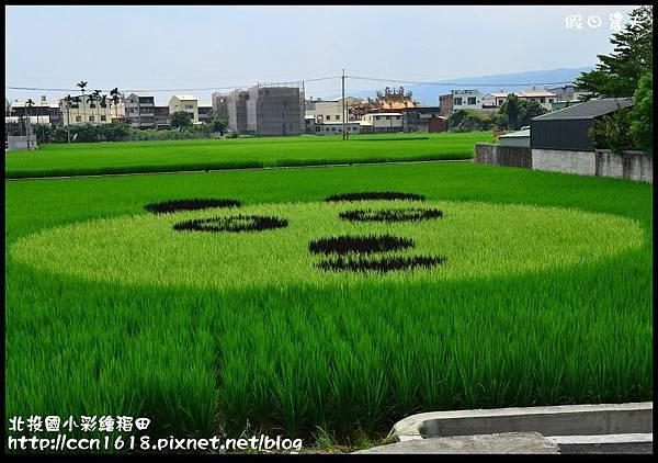 北投國小彩繪稻田DSC_9623