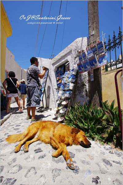 2010-Greece-Santorini-Megalochori 藍頂教堂-018.jpg