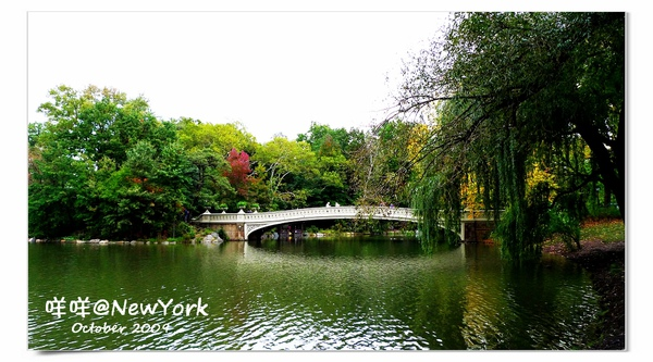 Central Park-031.jpg