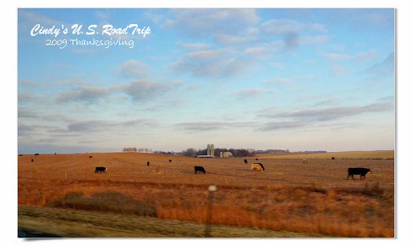 Thanksgiving RoadTrip-03.jpg