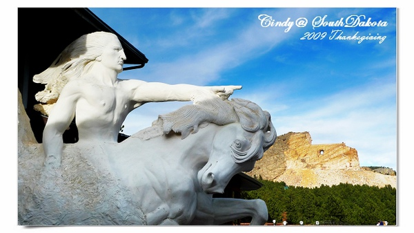 Carzy Horse-09.jpg