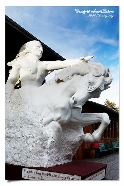 Carzy Horse-10.jpg