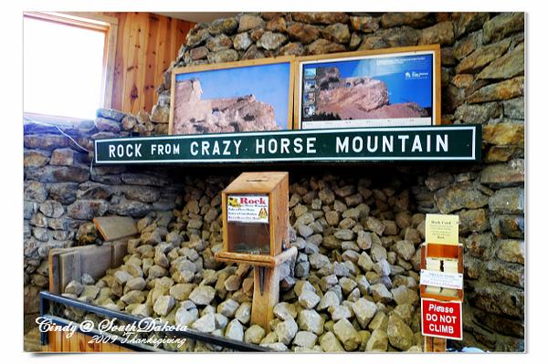 Carzy Horse-30.jpg
