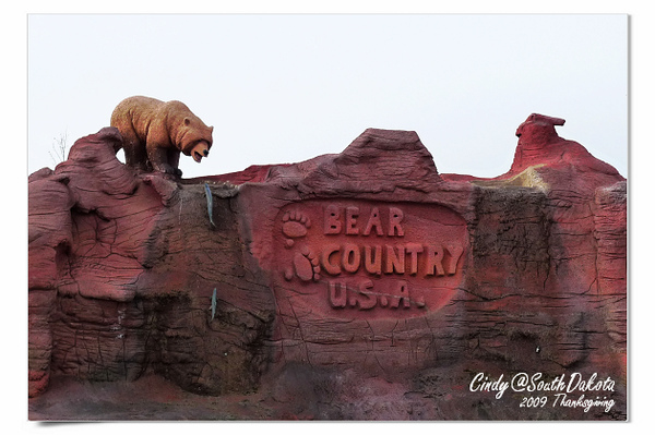 Bear Country-21.jpg