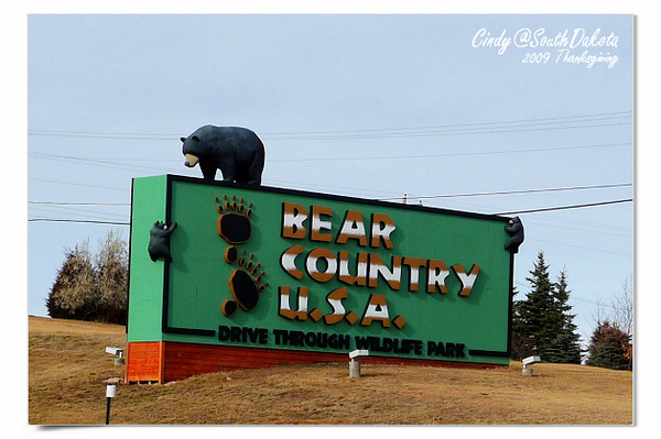 Bear Country-22.jpg