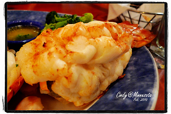 Red Lobster-12.jpg