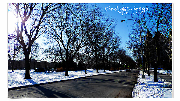University of Chicago-16.jpg