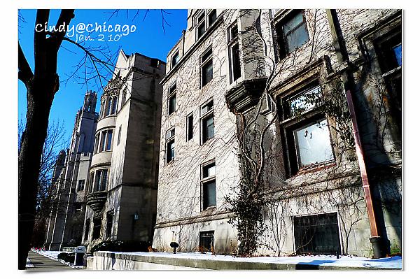 University of Chicago-20.jpg