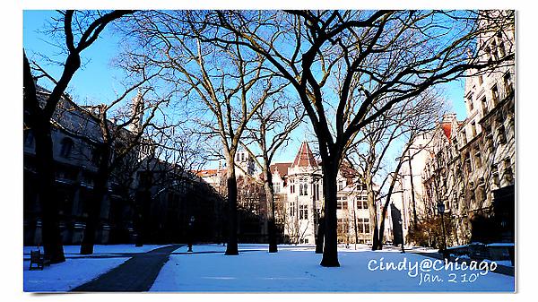 University of Chicago-22.jpg
