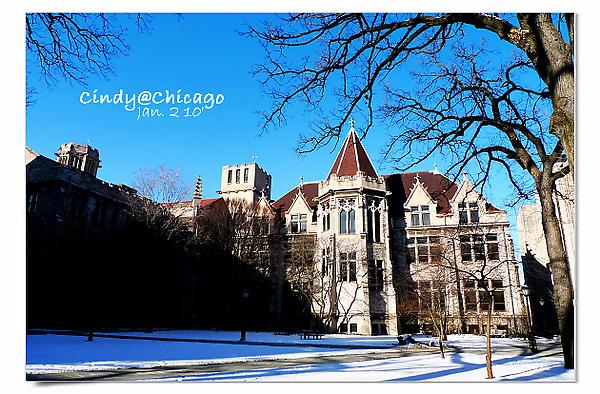 University of Chicago-23.jpg
