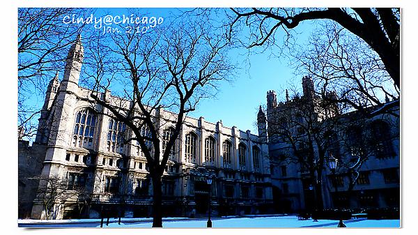 University of Chicago-25.jpg