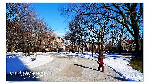 University of Chicago-26.jpg