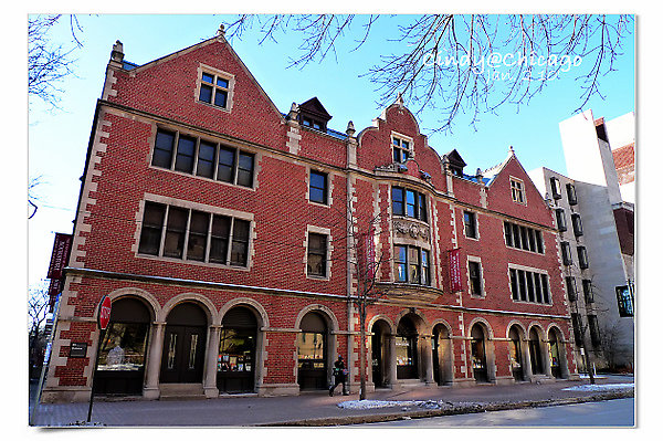University of Chicago-30.jpg