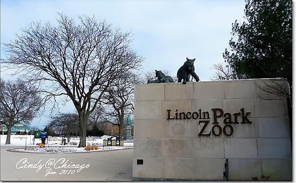 Lincoln Park Zoo-01.jpg